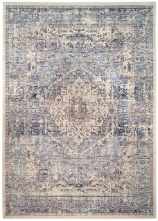 Persian style area rug in blue and grey