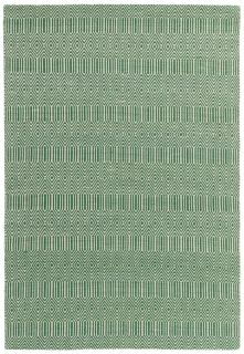 green and white rug with a geometric aztec design